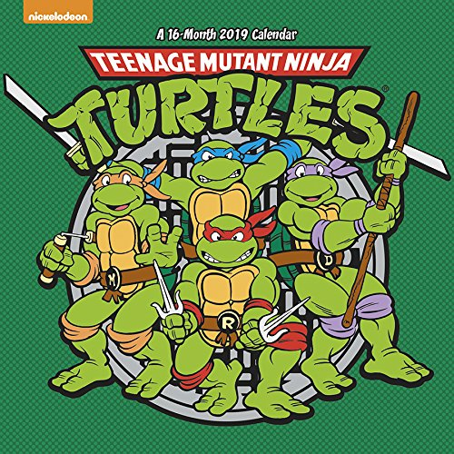 Teenage Mutant Ninja Turtles 2019 Calendar: Amazon.es ...