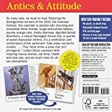 365 Cats Page-A-Day Calendar 2021