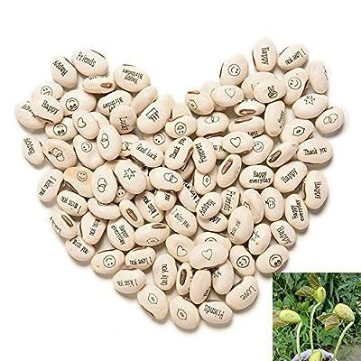 Magic Growing Message Beans Seeds Magic Bean English Magic Bean Bonsai Green Office Home Decoration 1000 PCS