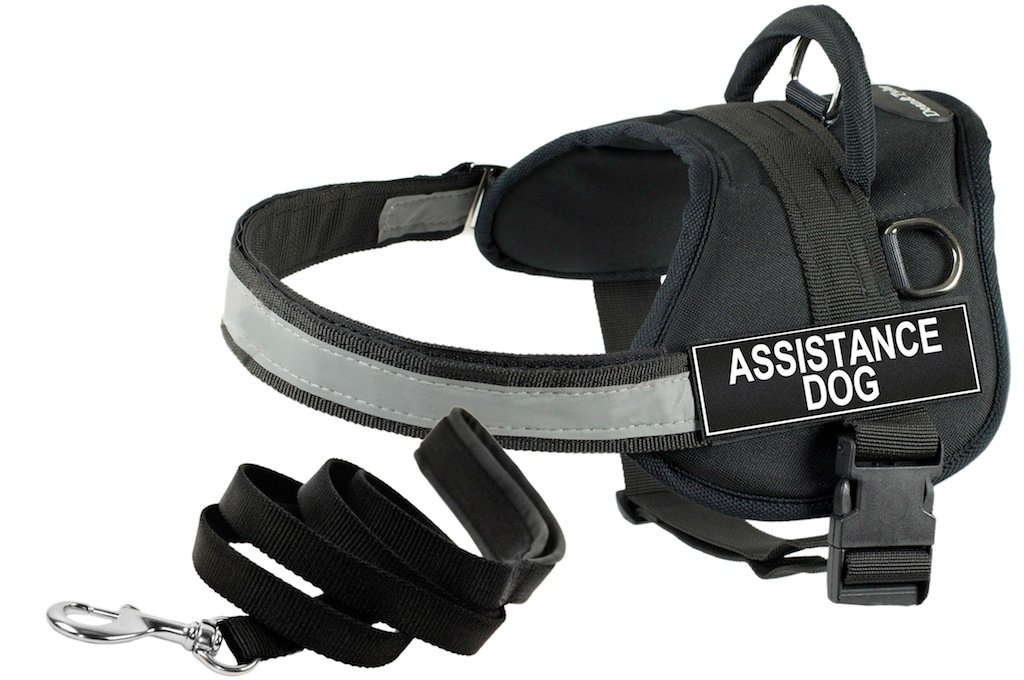 Dean and Tyler Bundle One DT Works  Harness, Assistance Dog, XSmall (21  26 ) + One Padded Puppy  Leash, 6 FT Stainless Steel Snap Black