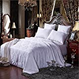 Shi Shang 100% Pure Long Mulberry Silk Filled Comforter Silk Comforter Silk Quilt Silk Duvet(87 X 95 Inches) Doona Bedspread Coverlet Blanket for All Seasons Use(Queen,White)