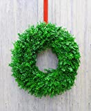 Fresh Boxwood Wreath (34-36'')