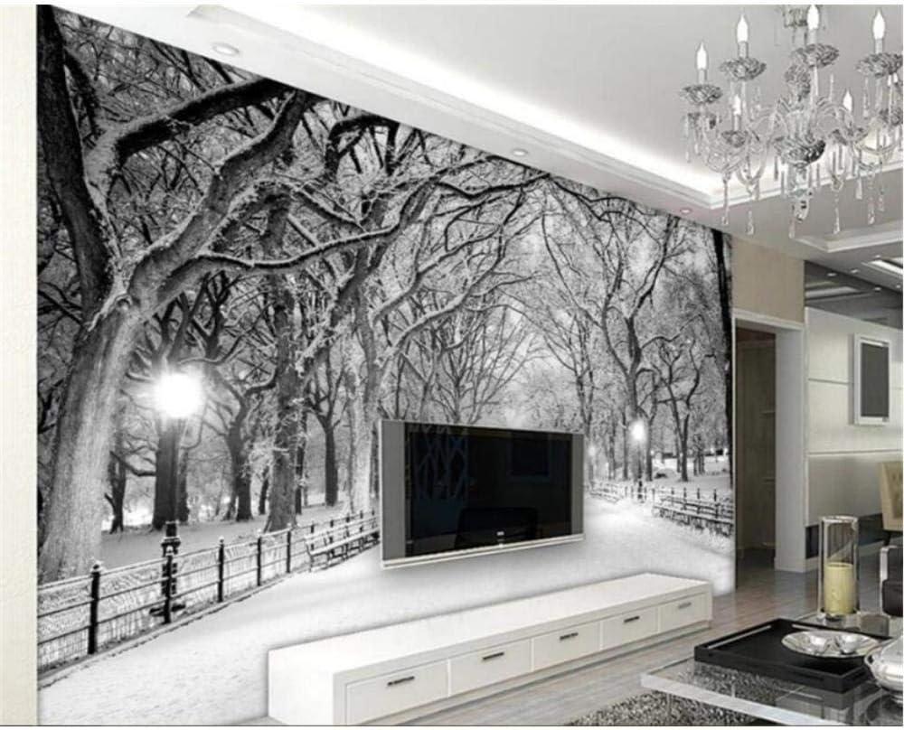Papel pintado Moderno Blanco y negro Woods Road Escena de nieve TV Sala de estar Sofá Fondo Pared Papel tapiz 3D Tapeta_120cm(W) x 100cm(H): Amazon.es: Bricolaje y herramientas