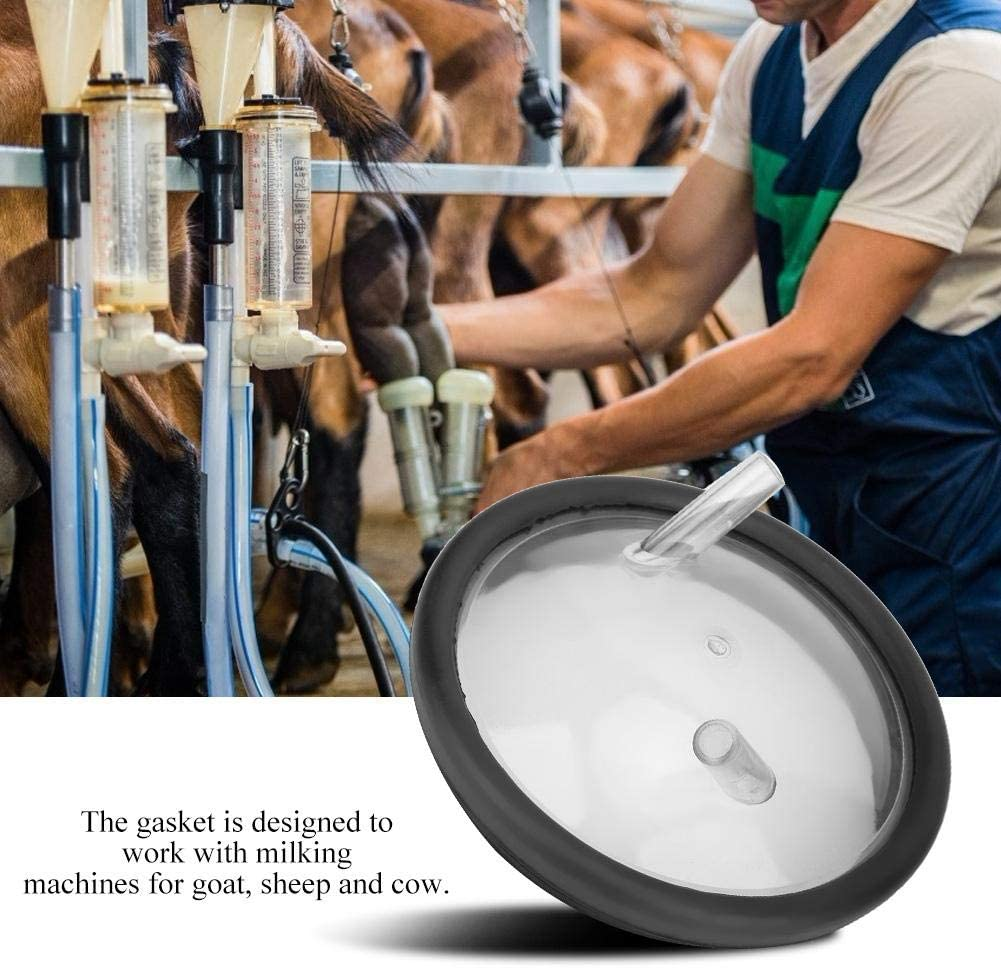 Plastic Transparent Milk Bucket Lid with Two Open Entrances and Gasket for Milking Machine Cow Sheep Milking Supplies