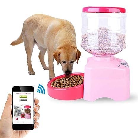 AUOKER Alimentador automático para Perros/Gatos, Auto Pet Dog Alimentador para dispensadores de Alimentos