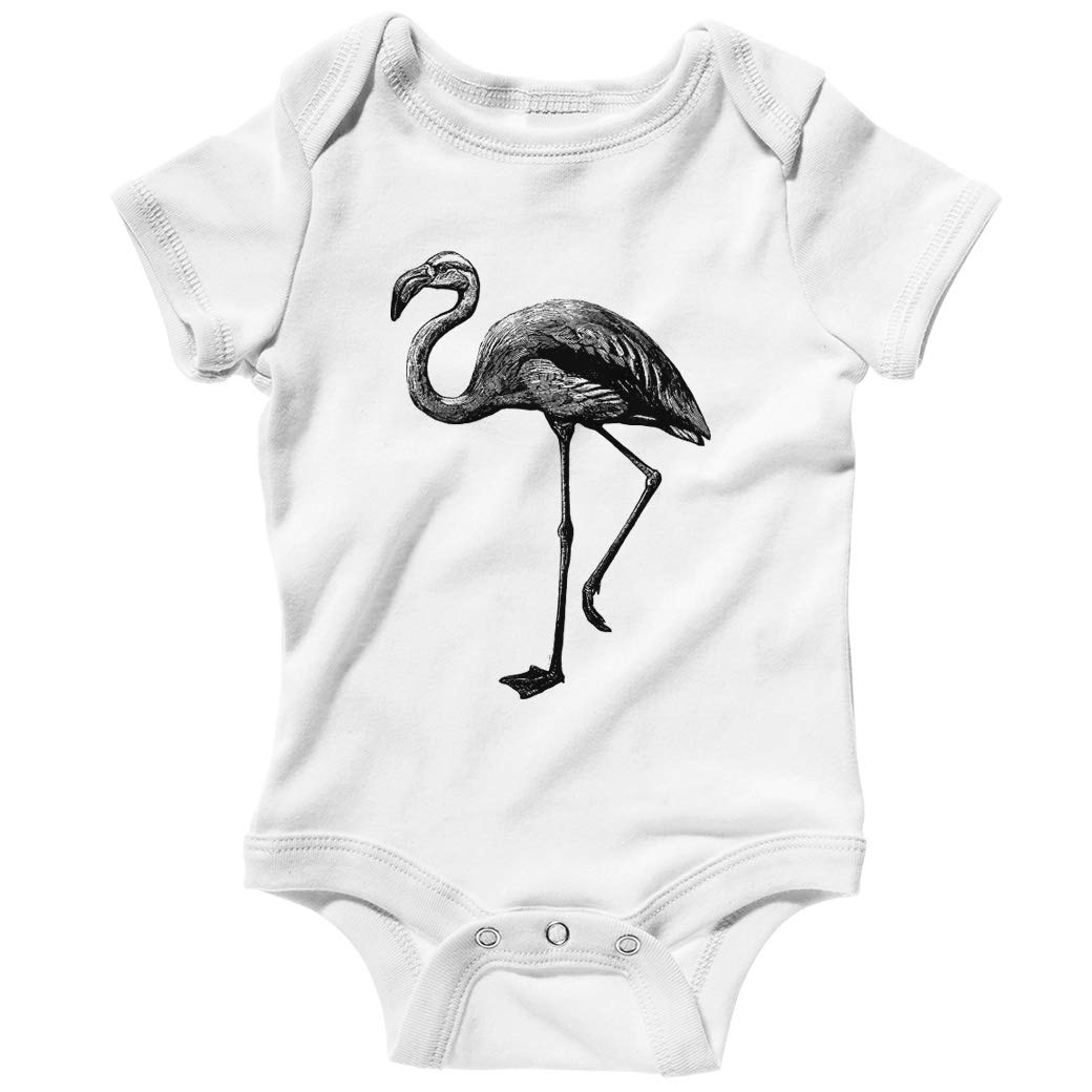 Smash Transit Baby Flamingo Creeper