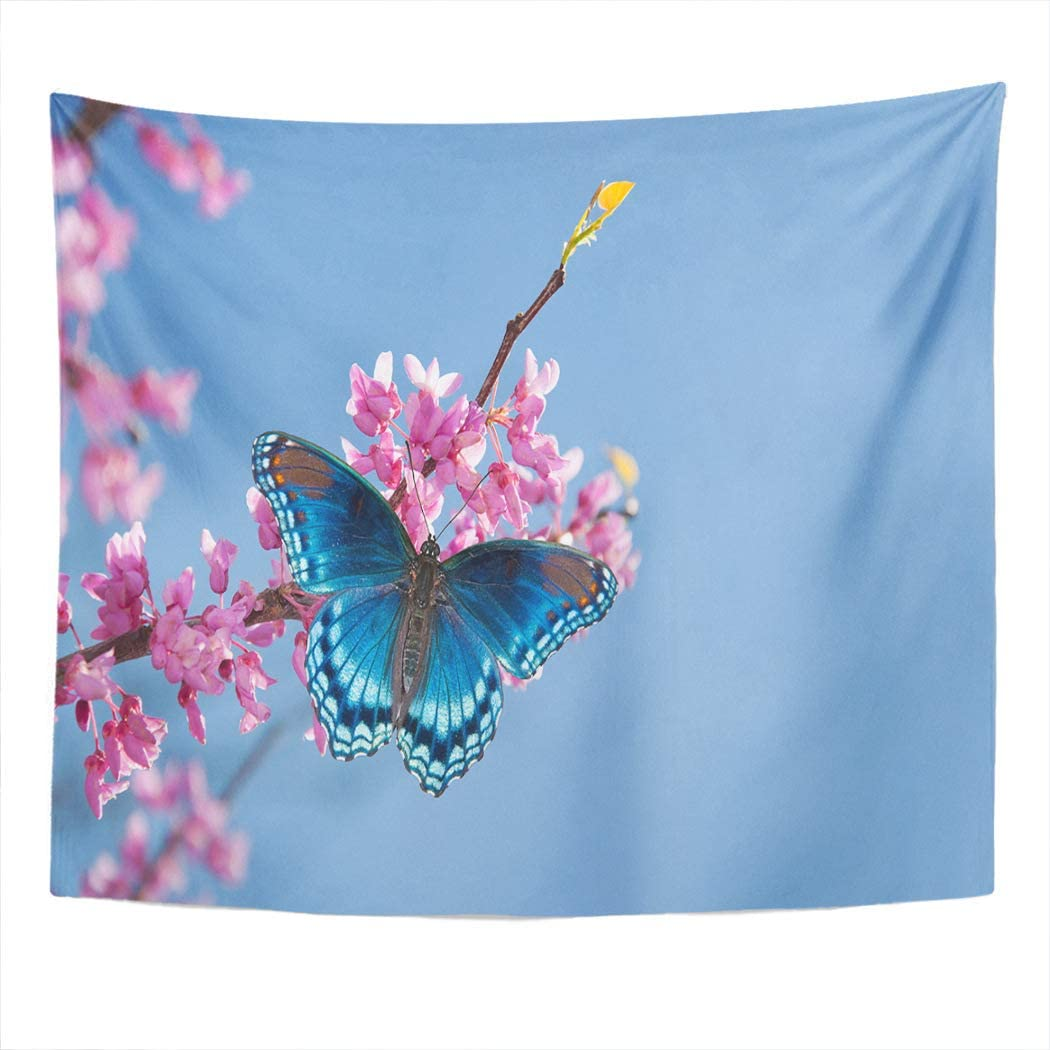 Llsty Tapestry Eastern Redbud Tree Red Spotted Purple Admiral Butterfly 60x80 Inches Polyester Suitable for Dormitory Living Room Bedroom Home Wall