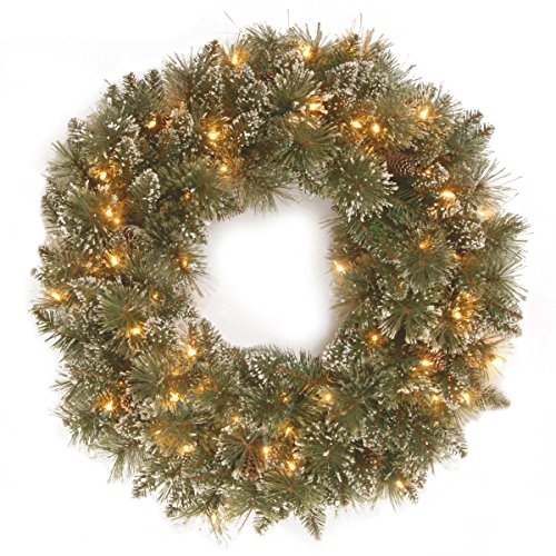 National Tree 24 Inch Glittery Bristle Pine Wreath with Pine Cones and 50 Warm White Battery Operated LED Lights (GB3-300-24W-B1)