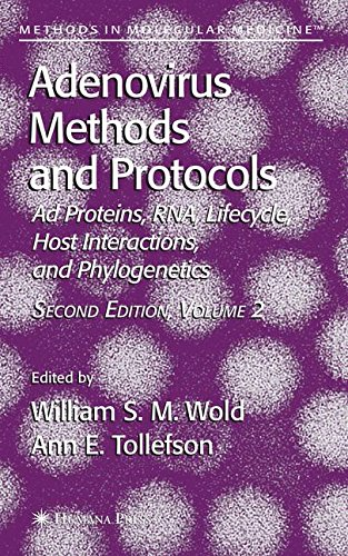 Adenovirus Methods and Protocols, Vol. 2: Ad Proteins and RNA, Lifecycle and Host Interactions, and Phyologenetics (Methods in Molecular Medicine, Vol. 131)