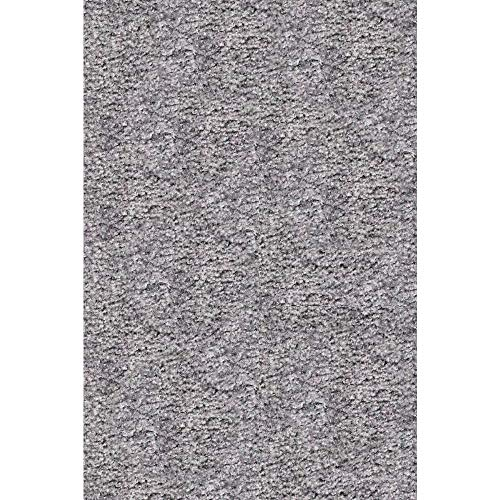 OCM Solid Gray All Purpose 10x12 Carpet, Perfect for College Residence Hall Dorm Rooms, bedrooms and More, high-qualty Nylon for a Soft Plush Thick Feel, with no-Skid Backing
