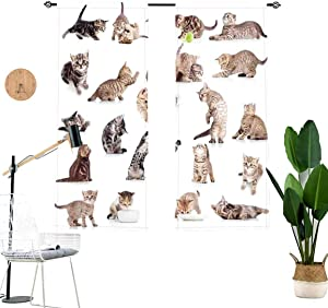 Cat Blackout Curtains,Collection of Funny Playful Baby Kitten Pet Scottish Tabby Striped Pussu Animal Window Drapes for Living Room Bedroom Kitchen Cafe,2 Panel Set,W29 x L45 Each Panel