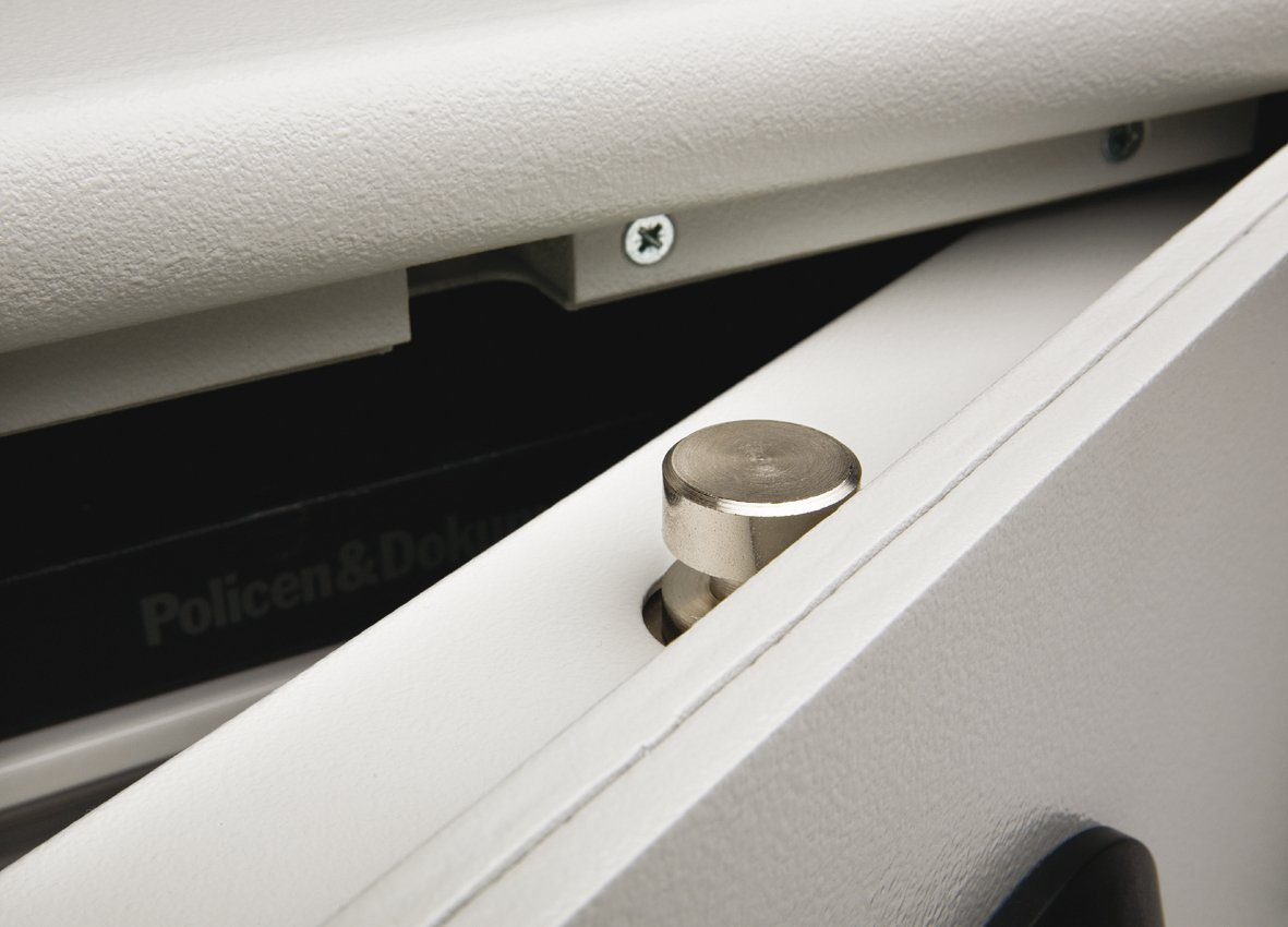 Ideal BURG-WÄCHTER Sicherheitsschrank, Doppelbartschloss  WG53