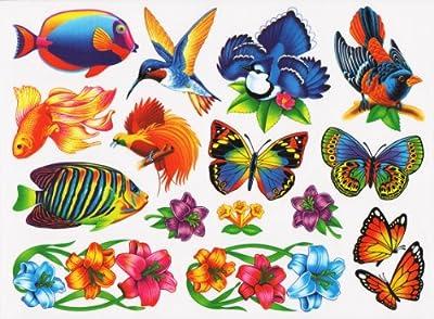 Nature Window Clings Butterflies Birds Flowers Fish Endangered Animals