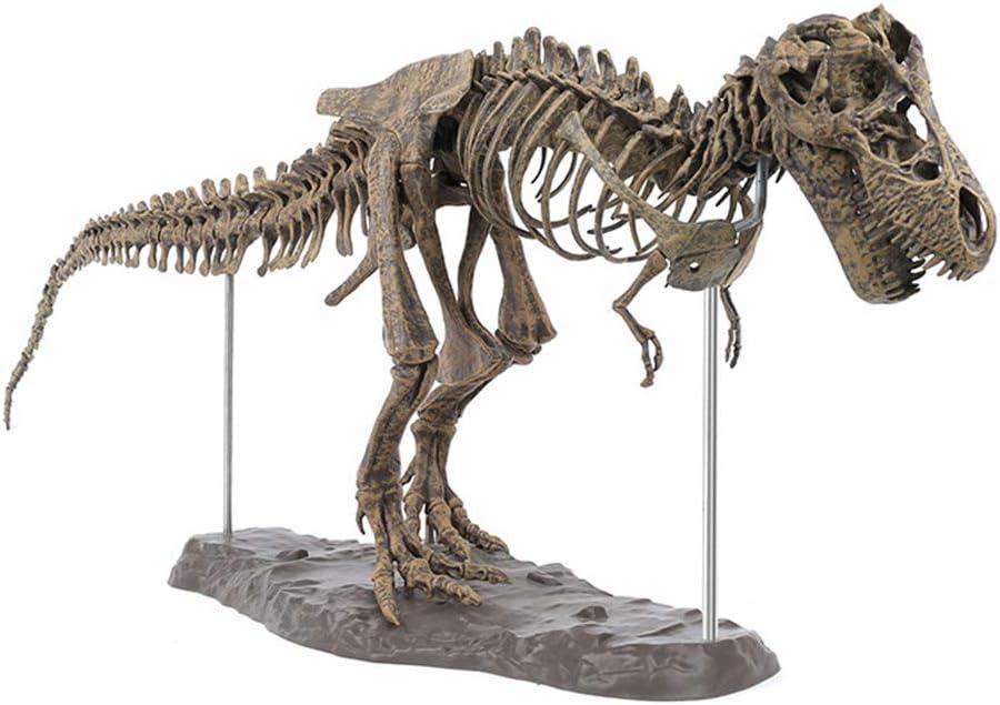 SUREH Giant Dinosaurier Esqueleto maqueta de Tyrannosaurus Rex Esqueleto Dinosaurio T Rex Modelo de Kits de Dinosaurio Maestro Juguete decoración Ciencia Experimento Kit 70 cm