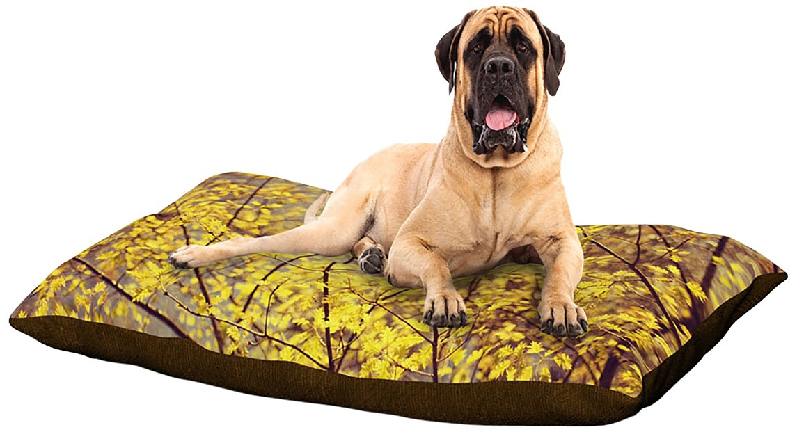 X-Large 40\ Kess InHouse Ingrid Beddoes Autumn Yellow  Fleece Dog Bed, 30 by 40-Inch