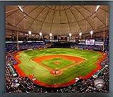 "Tropicana Field Tampa Bay Rays MLB Stadium Photo (Size: 17"" x 21"") Framed"
