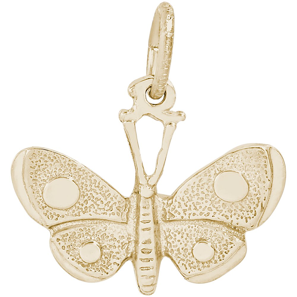 Rembrandt Sterling Silver Two-Tone Butterfly Charm on a Sterling Silver Rope Chain Necklace