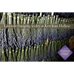 100-Natural-Dried-Lavender-Bouquet-from-Ketchum-Hollow-Grown-in-Idaho-USA-Fresh-2018-Harvest-Bundle-is-Carefully-Packaged-for-Safe-Shipping-Perfect-for-Weddings-Home-Decor-Gifts-and-More