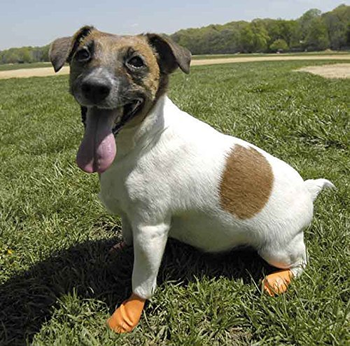 classic styles reputable site discount Dog Boots That Stay On Fit Securely Without Zippers Or Straps X-Small  Orange XS Sizes Up To 2 Inches