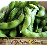 Japanese Edamame seeds ~~ Soy Bean HIGH IN PROTEIN -- Young Soy Bean - 80 - 90 Days (0050 Seeds - 50 Seeds - Pkt. Size)