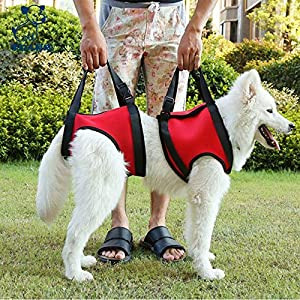 Uheng Dog Canine Sling Lift Adjustable Straps Support Harness Helps with Loss of Stability Caused by Joint Injuries… Click on image for further info.
