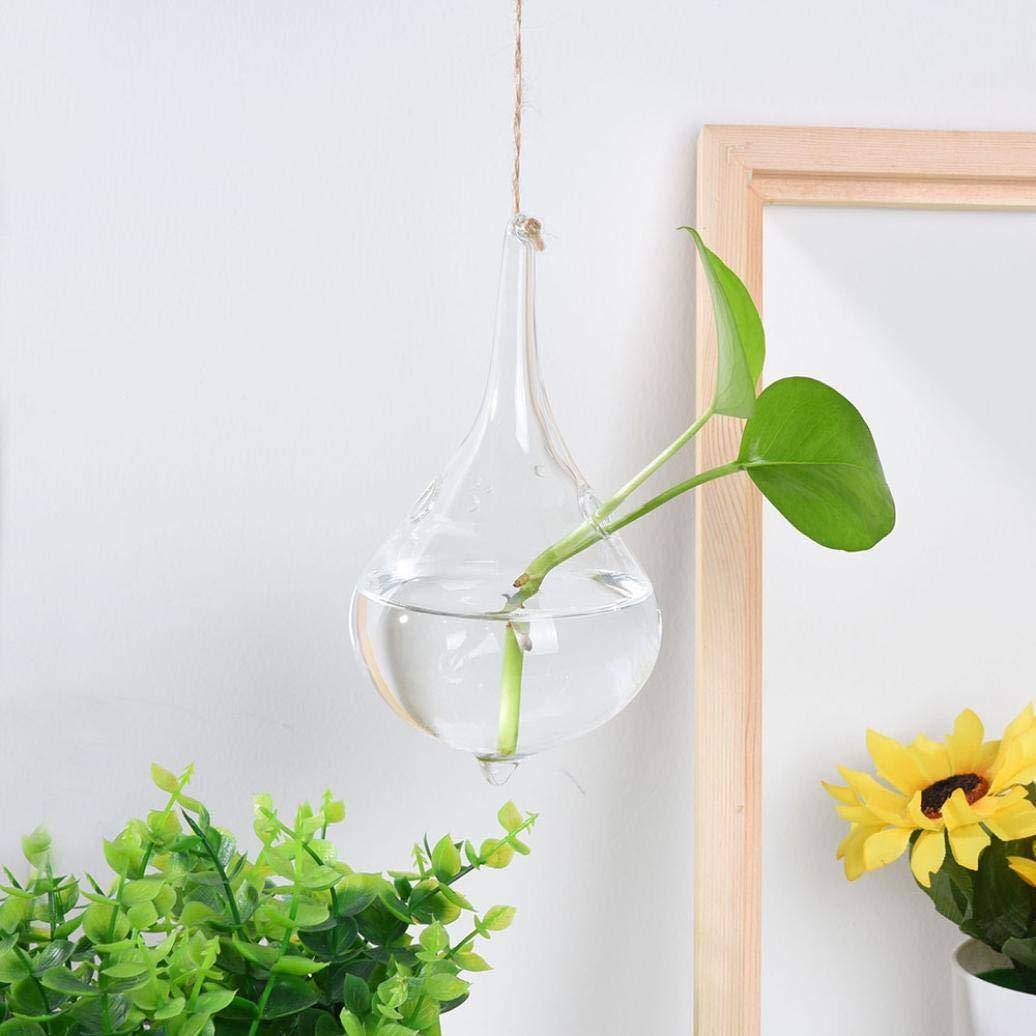 Claire A sunnymi DIY /à Suspendre Boule en Verre Fleur de Vase Pot Terrarium Plantation /à Nourriture f/ête Mariage