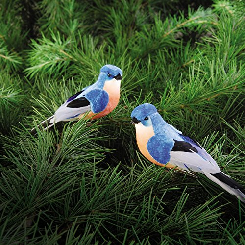 Feather/Foam Bluebird CLip Ornament A/2 4.5-5