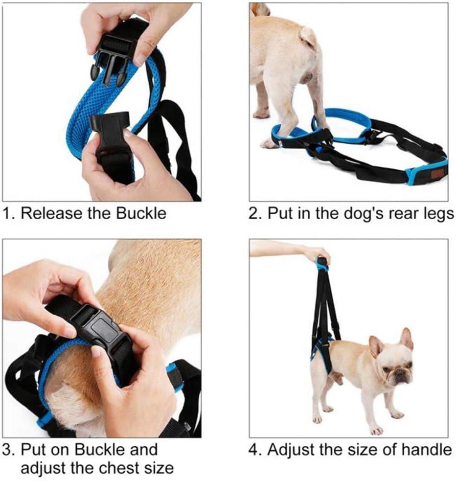 Dpower Hundegeschirr mit Leine, Luxus No-Pull-Hundegeschirr 3M Reflektierende Nylon Leichte Atmungsaktives Brustgeschirr Hund Einstellbar Weich Gepolsterter Welpengeschirr für Hundetraining Walking Grün