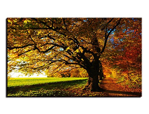 - Wall Decor for Fall Autumn Fabric Landscape Painting Modern canvas,Golden Leaves In Sunny Rays HD Prints Pictures Artwork for Living Room Home Decor Wooden Framed Stretched Ready to Hang(48''Wx28''H)