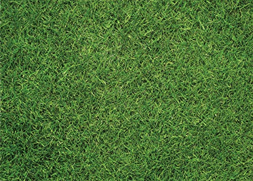 WOLADA 7x5FT Party Theme Photography Backdrop Natural Green photography background Lawn Grass Nature Outdoorsy Theme vinyl Backdrops for Newborn, Baby, sweethearts and Wedding Photo Studio Props 11323