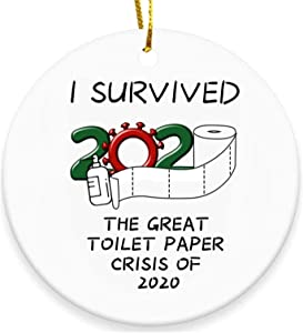BERCOL 2020 Christmas Ornaments, I Survived The Great Toilet Paper Crisis Handmade Christmas Decor, Friends Family, Christmas Decorations Indoor Outdoor Home
