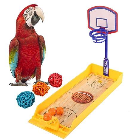 Pssopp Mini Canasta intelectiva de Baloncesto para Ave, Colorido ...