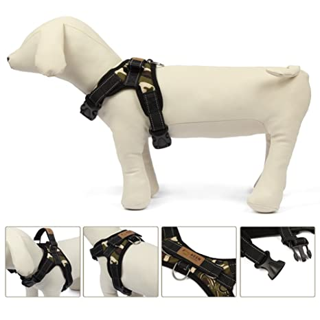 Arnés antitracción para perro de tamaño pequeño o mediano ...