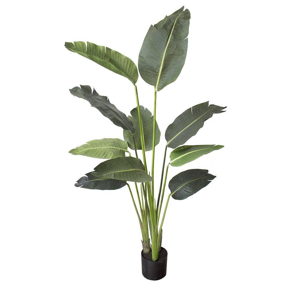 One 5 Foot Artificial Silk Bird Of Paradise Palm Tree Potted Plant by Silk Tree Warehouse