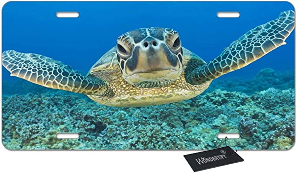 4 Holes Amcove License Plate Baby Sea Turtles Decorative Car Front License Plate,Vanity Tag,Metal Car Plate,Aluminum Novelty License Plate,6 X 12 Inch