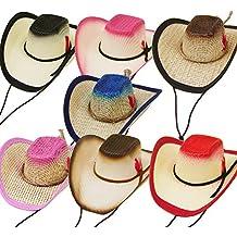 Modestone 24 Pcs Top Selling Combo Pack Pet Straw Cowboy Hats Asst. Colors