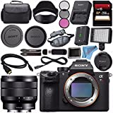 Sony ILCE7RM3/B Alpha a7R III Mirrorless Digital Camera (Body Only) E 10-18mm f/4 OSS Lens SEL1018 + 256GB SDXC Card + Professional 160 LED Video Light Studio Series Bundle