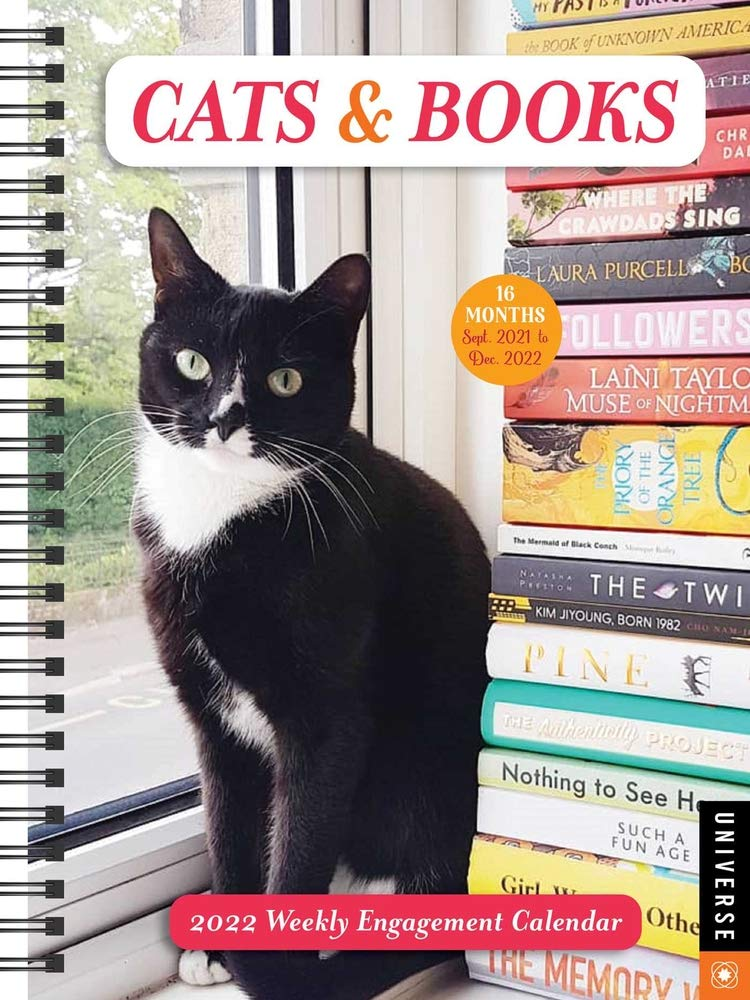 Cat Calendar 2022.Buy Cats Books 16 Month 2021 2022 Weekly Engagement Calendar Book Online At Low Prices In India Cats Books 16 Month 2021 2022 Weekly Engagement Calendar Reviews Ratings Amazon In