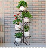 Five layers of iron creative multilayer flower racks balcony living room indoor flowerpot rack-B 201040inch(5025100cm)