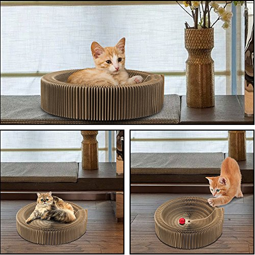 Amazon.com : Cat Scratcher Collapsible Bed with Catnip, Cardboard Scratcher Play Toy Round Scratching Lounge Bed for Kitty Kitten Cat : Pet Supplies