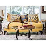 Furniture of America Argenie Fabric Upholstered Love Seat, Gold