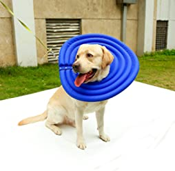 d21d172306 Fosinz Pet Collars Dog Protective Inflatable Mask Cat Recovery E-Collar  Water-Resistant Nylon