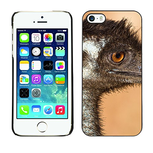 Premio Sottile Slim Cassa Custodia Case Cover Shell // F00009748 oiseau // Apple iPhone 5 5S 5G