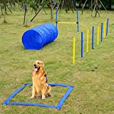 Globe House Products GHP Blue & Yellow 190T Polyester Cloth Tunnel Poles Cross Bar Pet Agility Training Set