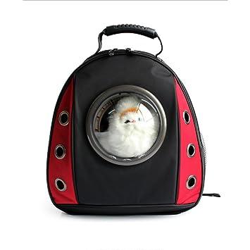 Aqi7 Paquete De Cofres Espaciales para Mascotas, Mochila Deportiva Creativa para Viajes De Mascotas, Pequeño Perro Y Transportador De Gatos,Red: Amazon.es: ...