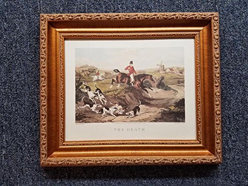English Fox Hunt Scene Picture -