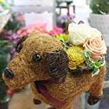長持ちする花 ワンちゃんに枯れないバラの花をアレンジメント 誕生日プレゼントや退職・送別・合格などのお祝いにプリザーブドフラワー 花 ギフト
