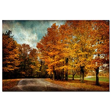 Trademark Fine Art Autumn Scene by Lois Bryan Canvas Wall Art, 16x24-Inch