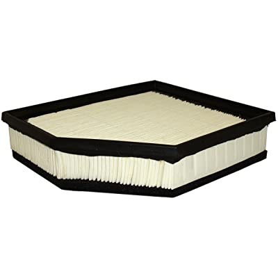 Luber-finer AF7939 Heavy Duty Air Filter: Automotive