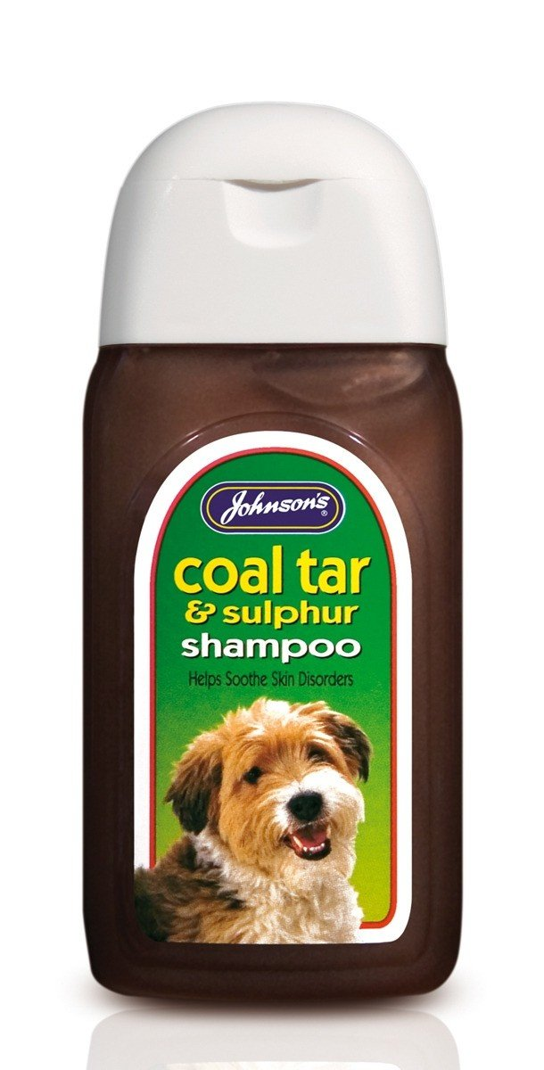 Best Shampoo For Dogs With Dry Itchy Skin Uk